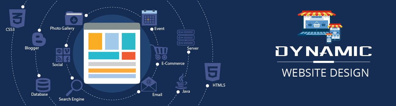 Best dynamic website designing company in Delhi
